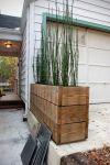 pot tanaman alang-alang kayu 2 meter